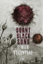 Burnt Black Suns